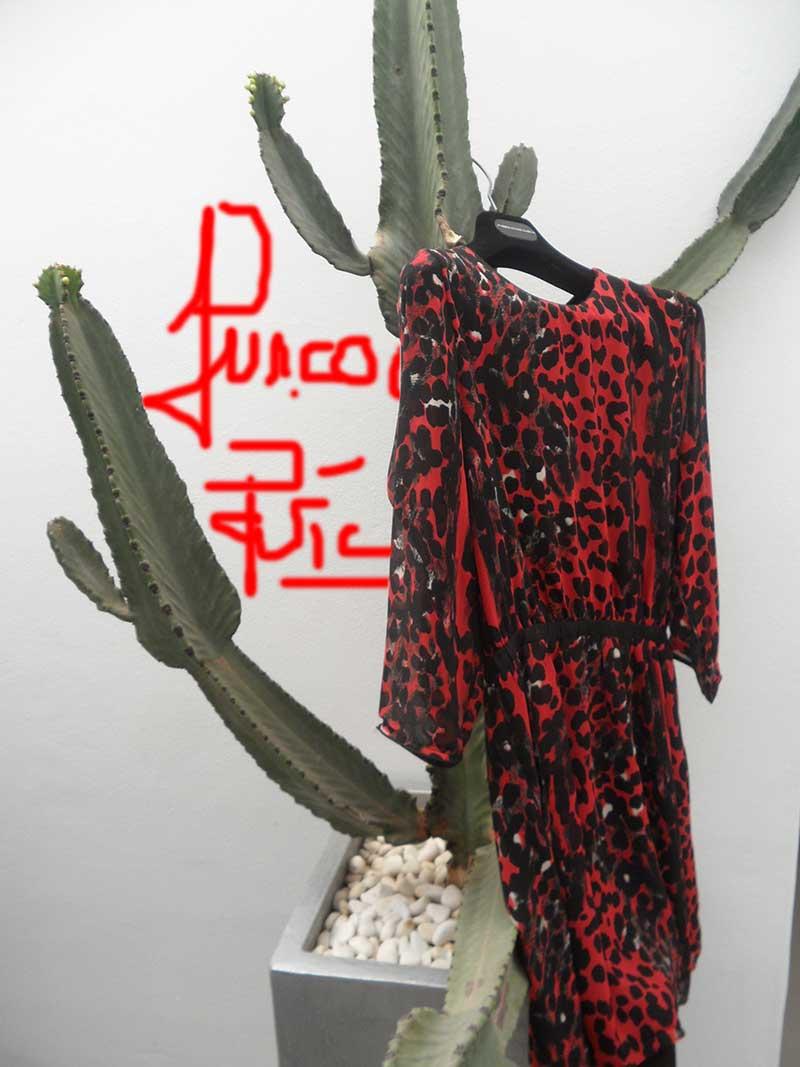 Suncoo Paris Cactus