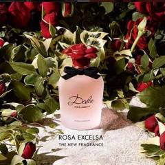 DOLCE ROSE EXCELSA LA NUEVA FRAGANCIA DE DOLCE GABBANA
