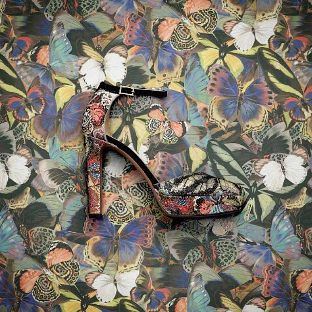 valentino-butterfly-shoe